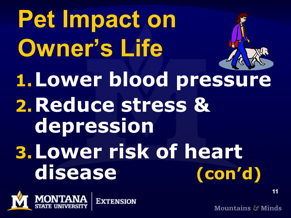 11 Pet Impact on Owners Life 1. Lower blood pressure 2.