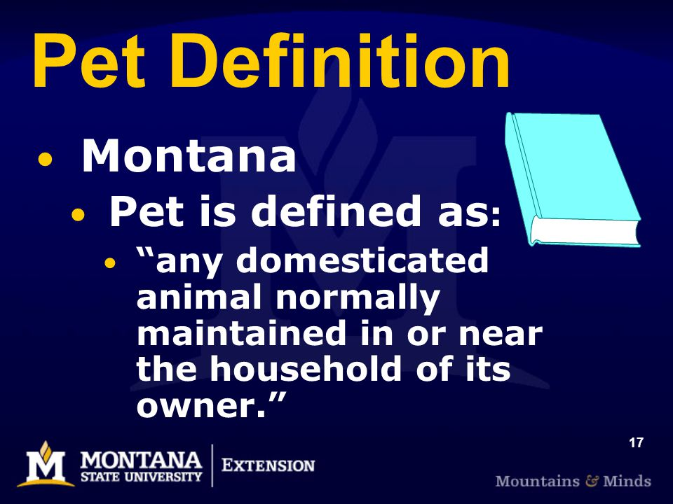 17 Pet Definition Montana Pet is defined as : any domesticated animal normally maintained in or near the household of its owner.