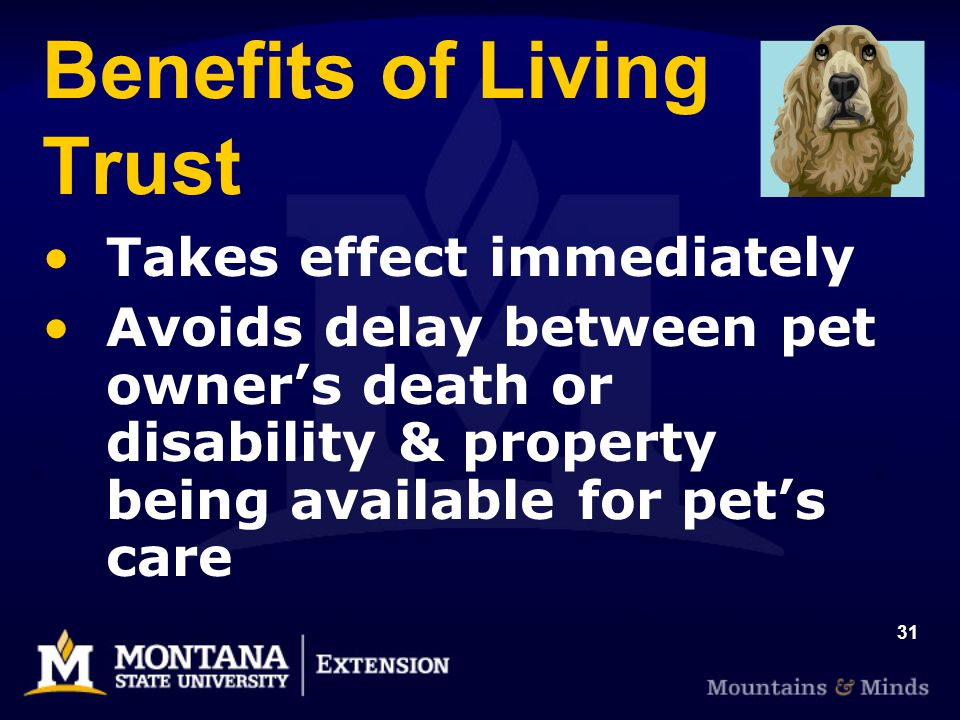 31 Benefits of Living Trust Takes effect immediately Avoids delay between pet owners death or disability & property being available for pets care