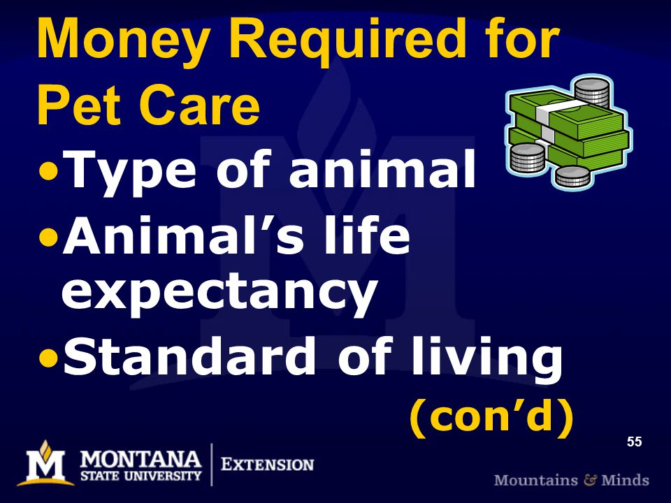55 Money Required for Pet Care Type of animal Animals life expectancy Standard of living (cond)