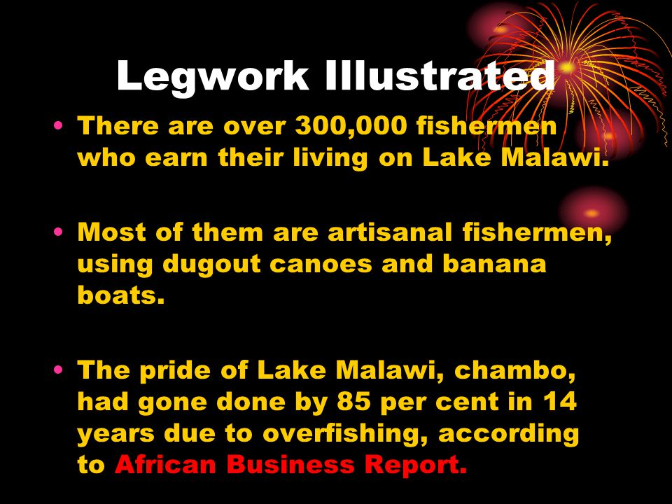 Legwork Illustrated There are over 300,000 fishermen who earn their living on Lake Malawi. Most of them are artisanal fishermen, using dugout canoes a