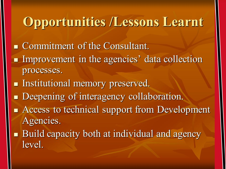 Opportunities /Lessons Learnt Commitment of the Consultant.