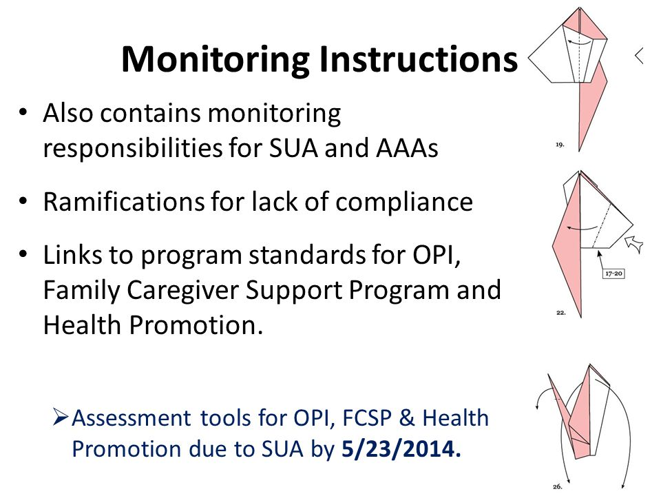 Also contains monitoring responsibilities for SUA and AAAs Ramifications for lack of compliance Links to program standards for OPI, Family Caregiver S