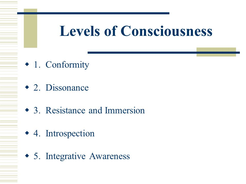 Levels of Consciousness 1. Conformity 2. Dissonance 3. Resistance and Immersion 4. Introspection 5. Integrative Awareness