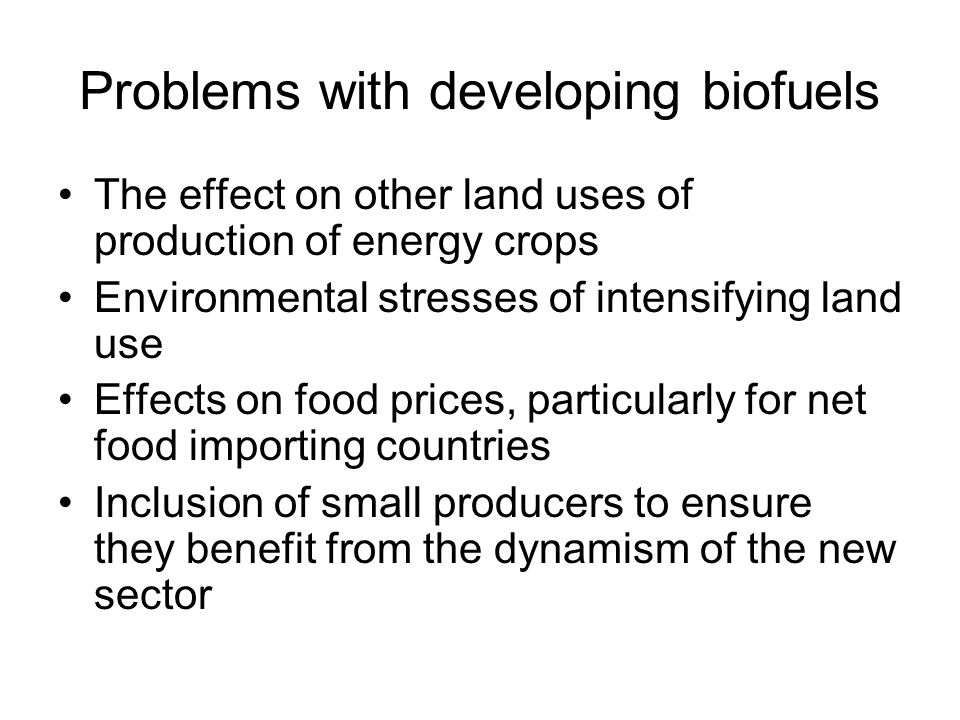 Problems with developing biofuels The effect on other land uses of production of energy crops Environmental stresses of intensifying land use Effects on food prices, particularly for net food importing countries Inclusion of small producers to ensure they benefit from the dynamism of the new sector