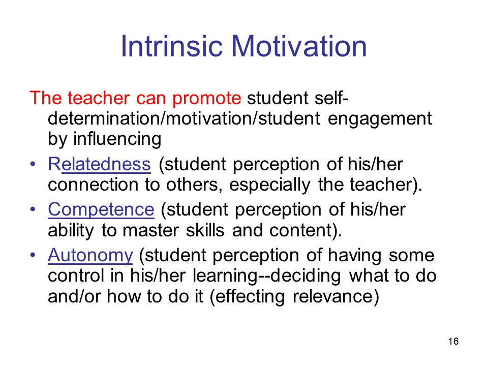 16 Intrinsic Motivation The teacher can promote student self- determination/motivation/student engagement by influencing Relatedness (student percepti