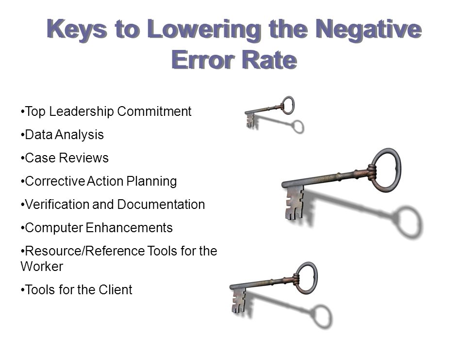 Keys to Lowering the Negative Error Rate Top Leadership Commitment Data Analysis Case Reviews Corrective Action Planning Verification and Documentation Computer Enhancements Resource/Reference Tools for the Worker Tools for the Client