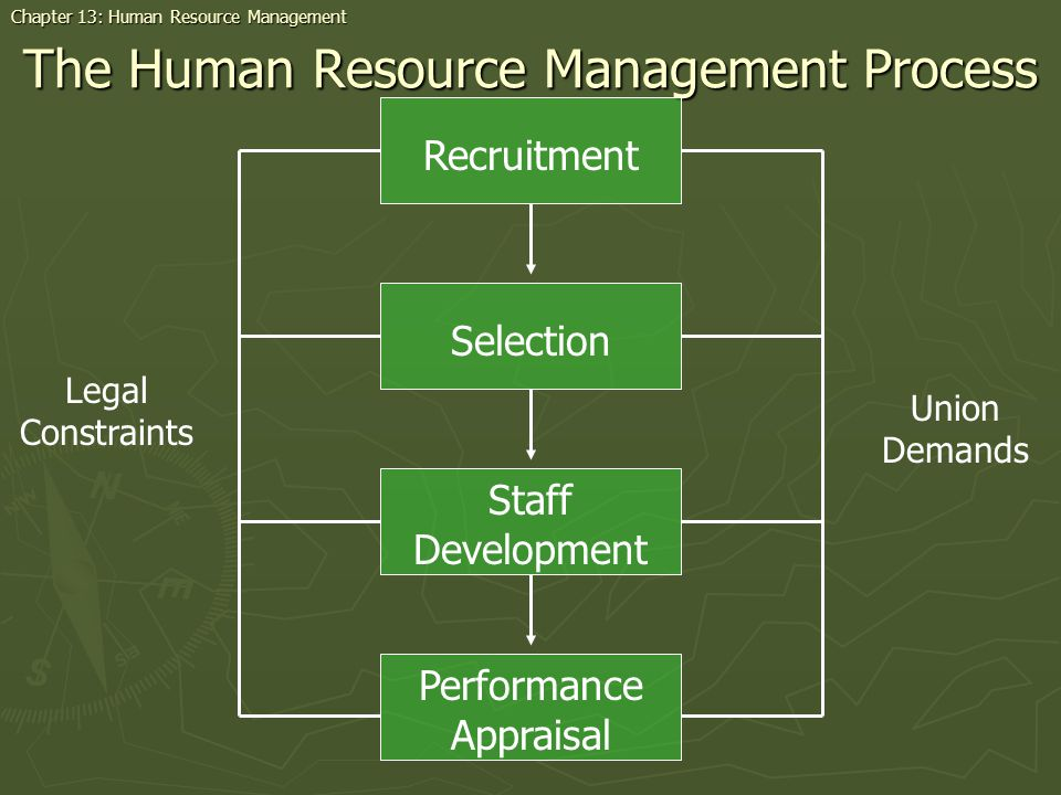 The Human Resource Management Process Recruitment Staff Development Selection Performance Appraisal Legal Constraints Union Demands Chapter 13: Human