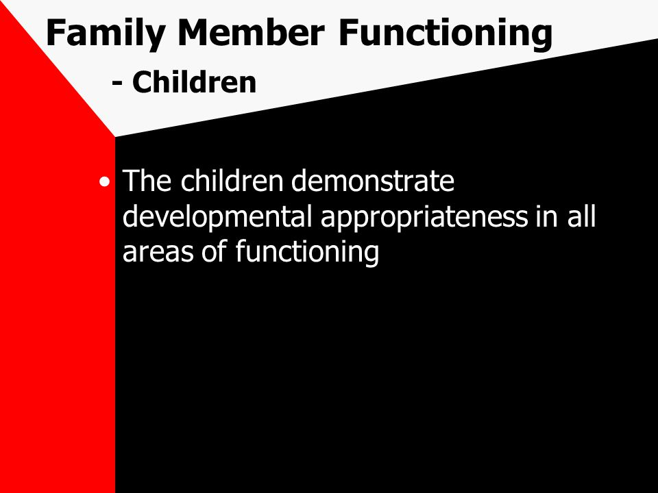 Family Member Functioning - Children The children demonstrate developmental appropriateness in all areas of functioning