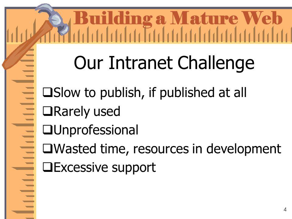 Building a Mature Web 15 Organize Content Set standards Create a style guide Test a model