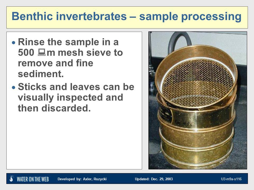 Developed by: Axler, Ruzycki Updated: Dec. 29, 2003 U3-m9a-s116 Benthic invertebrates – sample processing Rinse the sample in a 500 m mesh sieve to re