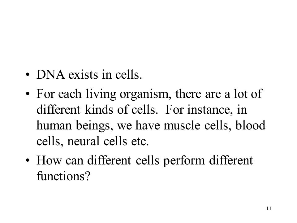 11 DNA exists in cells. For each living organism, there are a lot of different kinds of cells.