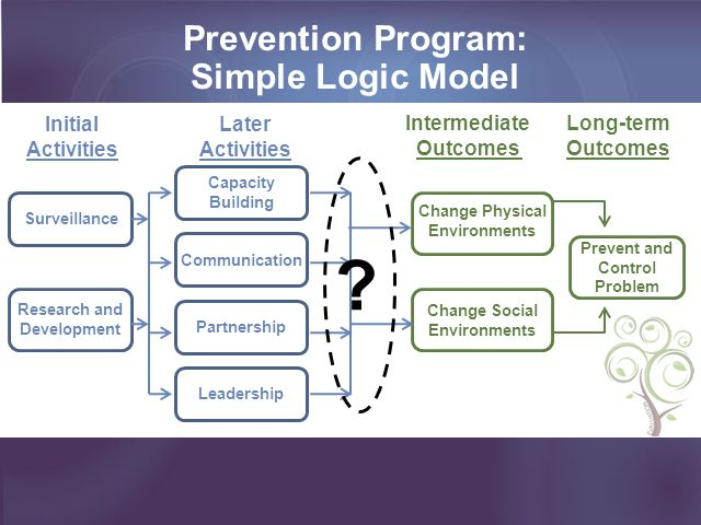 Prevention Program: Simple Logic Model Surveillance Research and Development Capacity Building Change Physical Environments Change Social Environments