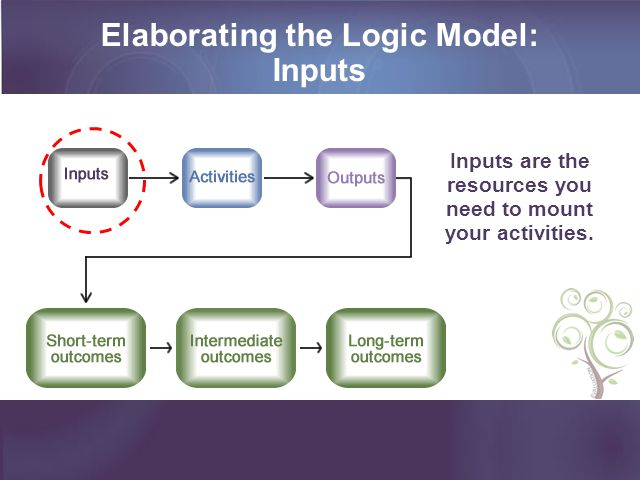 Elaborating the Logic Model: Inputs Inputs are the resources you need to mount your activities.