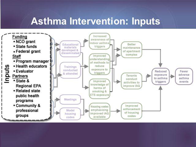 Asthma Intervention: Inputs