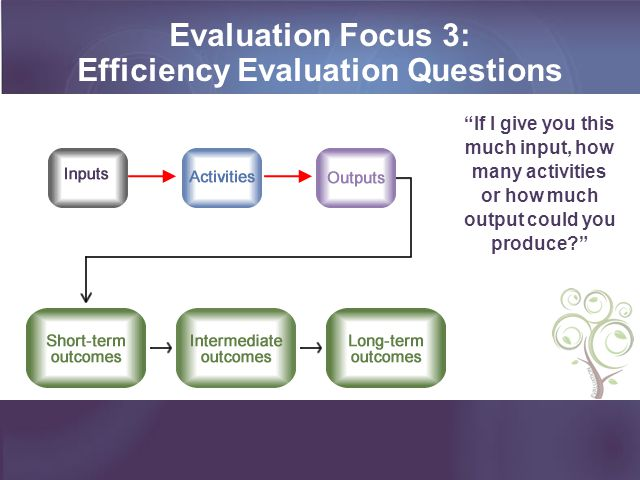 Evaluation Focus 3: Efficiency Evaluation Questions If I give you this much input, how many activities or how much output could you produce?