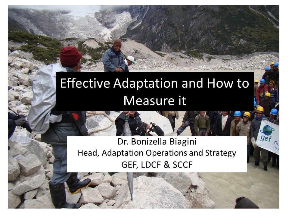Effective Adaptation and How to Measure it Dr. Bonizella Biagini Head, Adaptation Operations and Strategy GEF, LDCF & SCCF