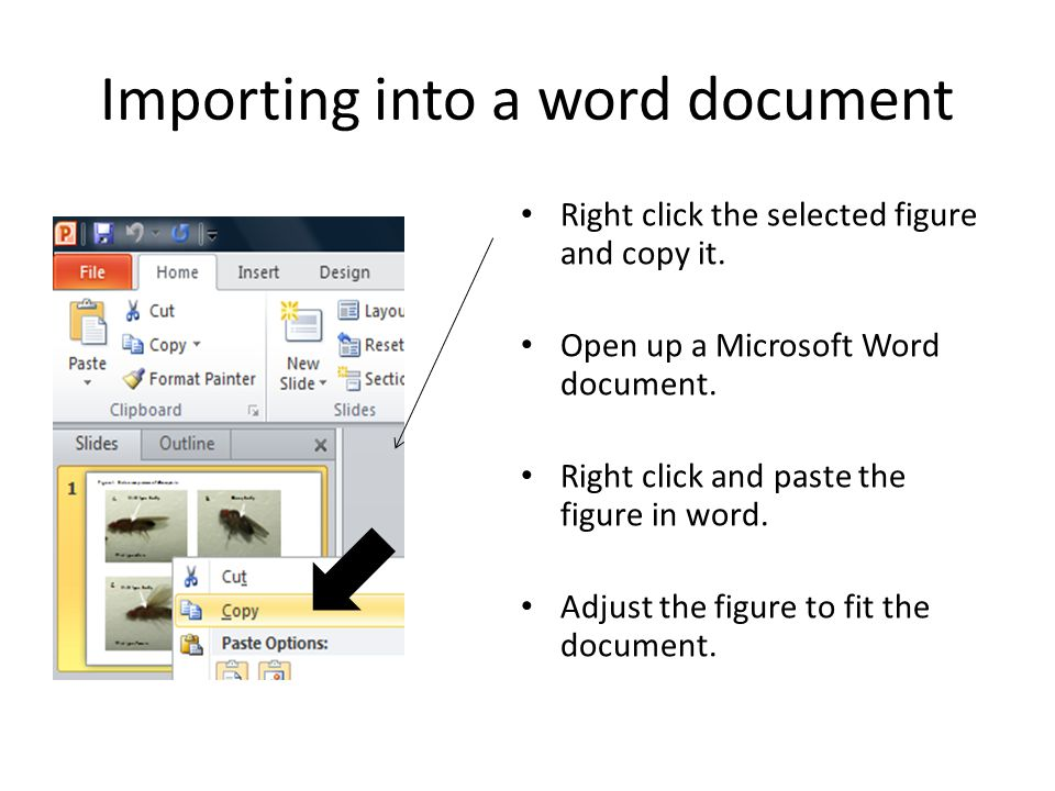 Importing into a word document Right click the selected figure and copy it.