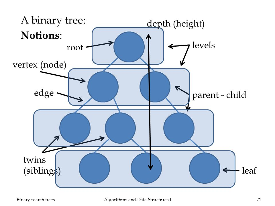 A binary tree: Notions : Algorithms and Data Structures I71Binary search trees vertex (node) edge root twins (siblings) parent - child leaf levels dep