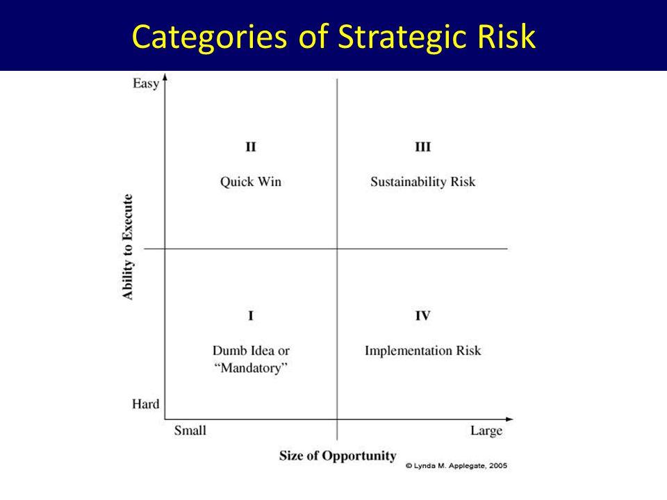 Categories of Strategic Risk