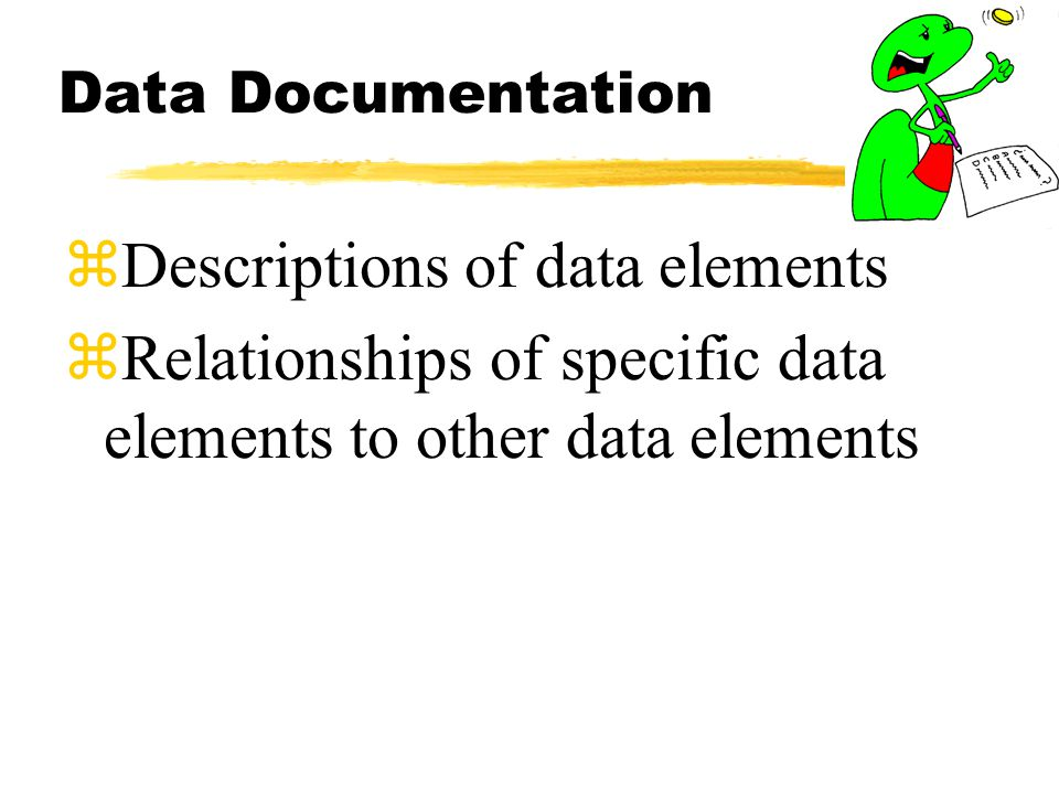 Data Documentation zDescriptions of data elements zRelationships of specific data elements to other data elements