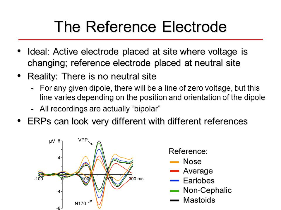 The Reference Electrode Ideal: Active electrode placed at site where voltage is changing; reference electrode placed at neutral site Ideal: Active ele
