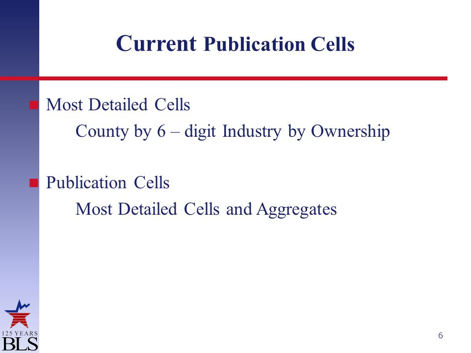 Current Publication Cells Most Detailed Cells County by 6 – digit Industry by Ownership Publication Cells Most Detailed Cells and Aggregates 6