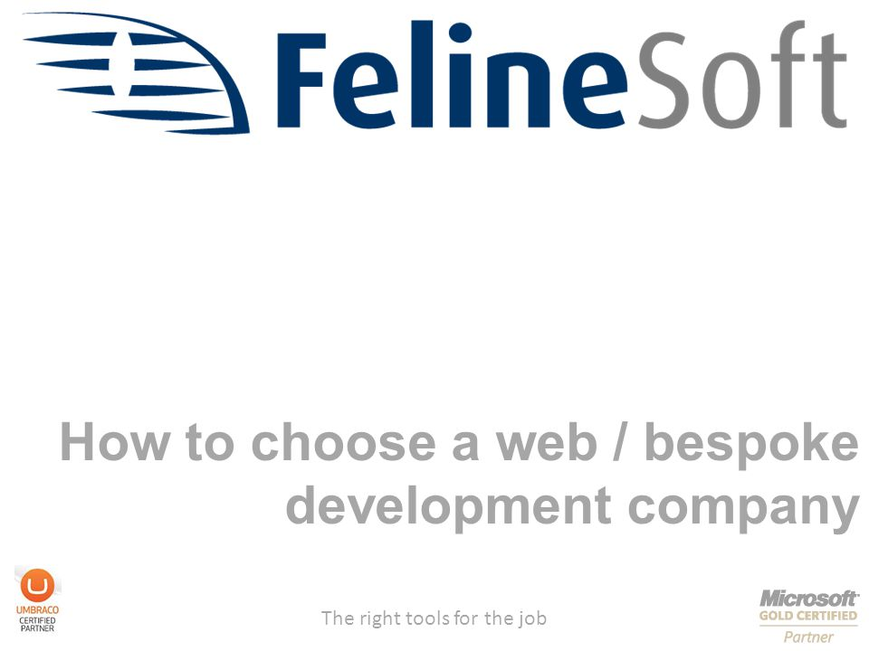 The right tools for the job How to choose a web / bespoke development company