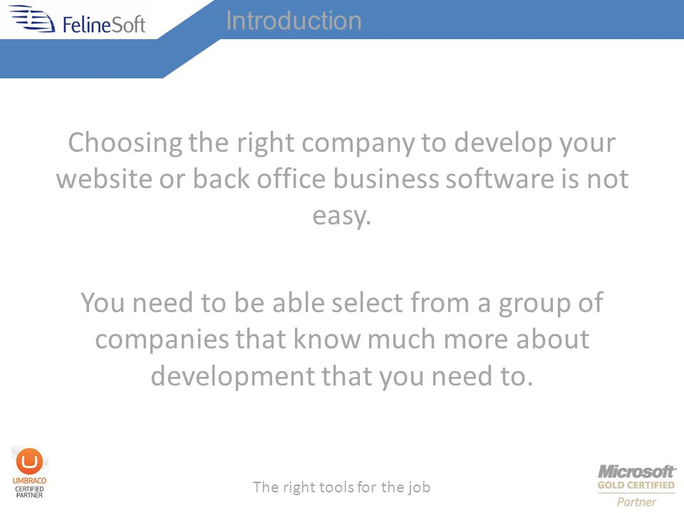The right tools for the job Introduction Choosing the right company to develop your website or back office business software is not easy.