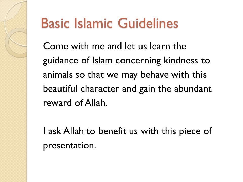 Basic Islamic Guidelines Come with me and let us learn the guidance of Islam concerning kindness to animals so that we may behave with this beautiful