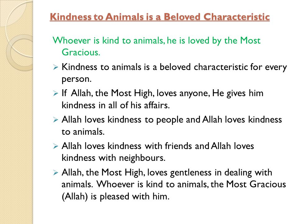 Kindness to Animals is a Beloved Characteristic Whoever is kind to animals, he is loved by the Most Gracious. Kindness to animals is a beloved charact