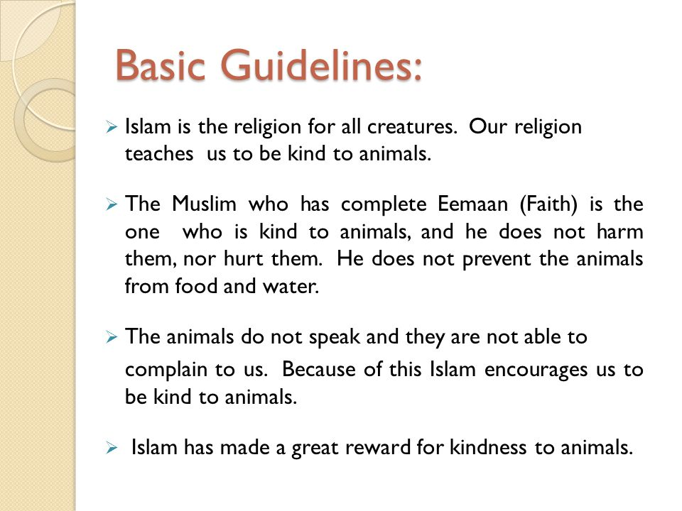 Basic Guidelines: Islam is the religion for all creatures. Our religion teaches us to be kind to animals. The Muslim who has complete Eemaan (Faith) i