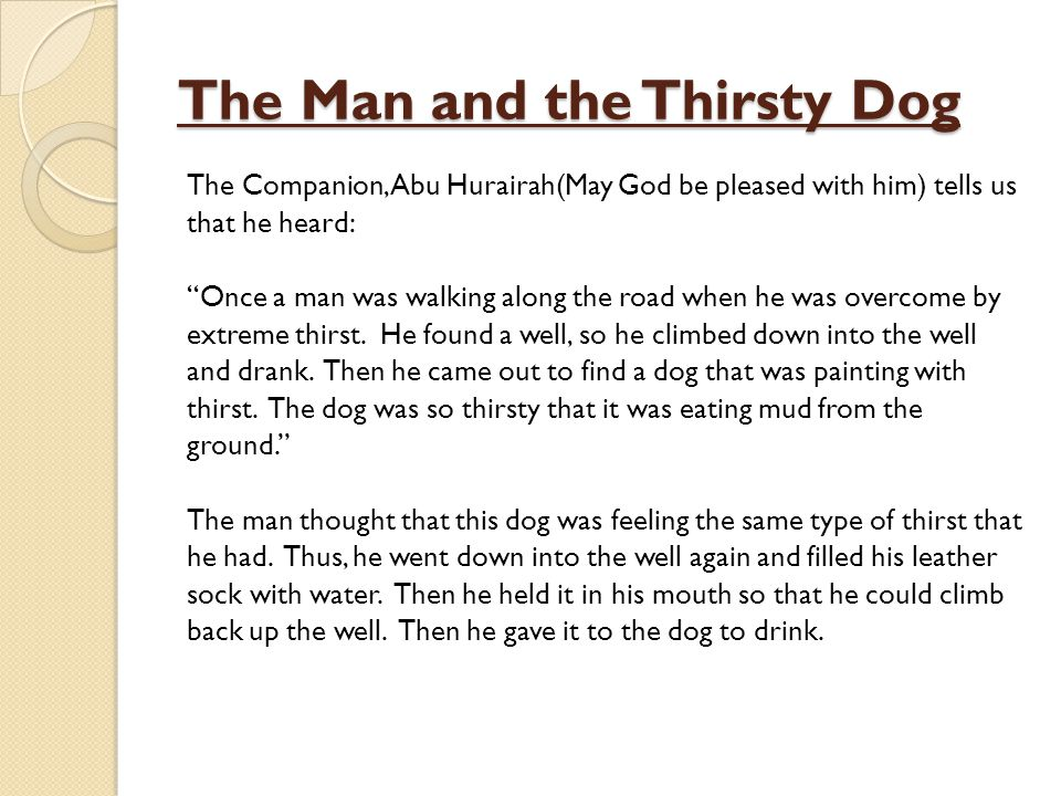 The Man and the Thirsty Dog The Companion, Abu Hurairah(May God be pleased with him) tells us that he heard: Once a man was walking along the road whe