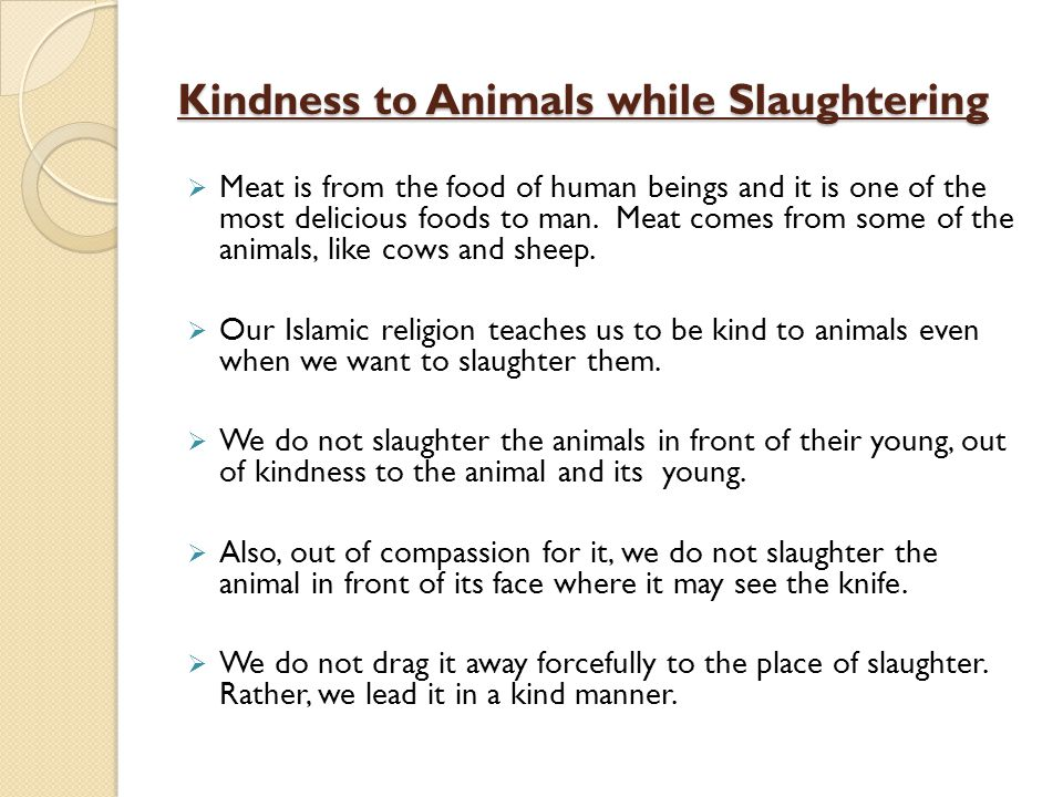 Kindness to Animals while Slaughtering Meat is from the food of human beings and it is one of the most delicious foods to man. Meat comes from some of