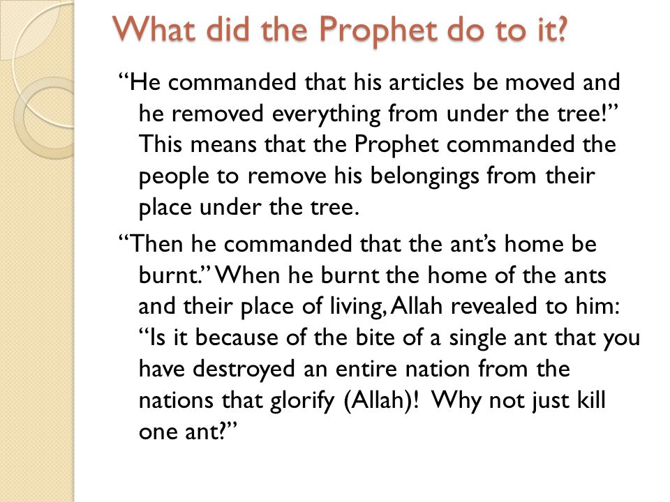 What did the Prophet do to it? He commanded that his articles be moved and he removed everything from under the tree! This means that the Prophet comm