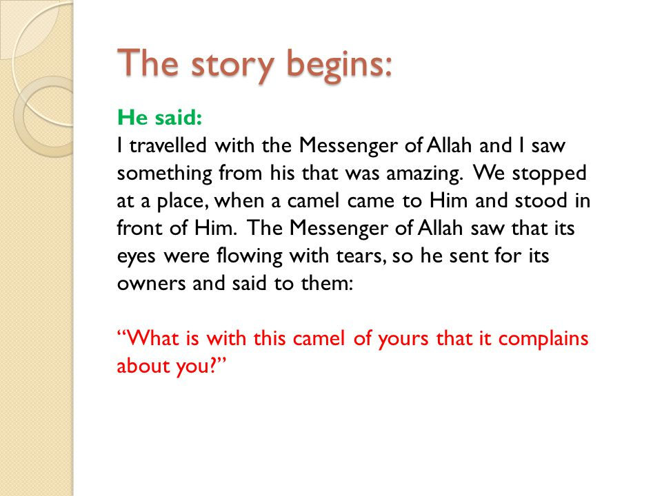 The story begins: The story begins: He said: I travelled with the Messenger of Allah and I saw something from his that was amazing. We stopped at a pl