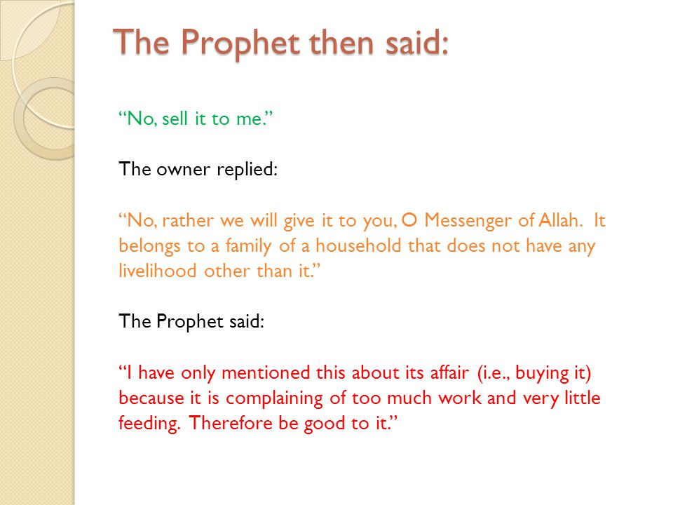 The Prophet then said: No, sell it to me. The owner replied: No, rather we will give it to you, O Messenger of Allah. It belongs to a family of a hous