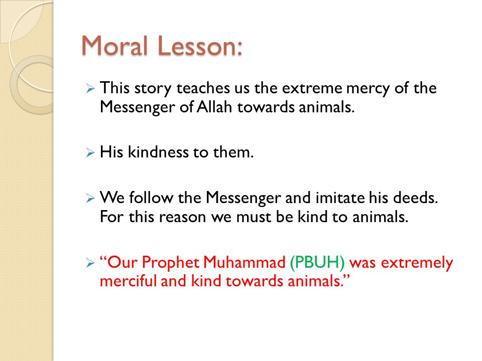 Moral Lesson: This story teaches us the extreme mercy of the Messenger of Allah towards animals. His kindness to them. We follow the Messenger and imi