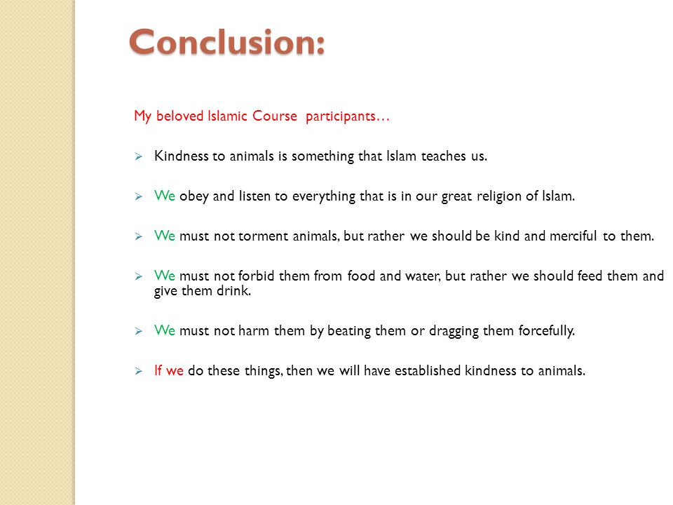 Conclusion: My beloved Islamic Course participants… Kindness to animals is something that Islam teaches us. We obey and listen to everything that is i