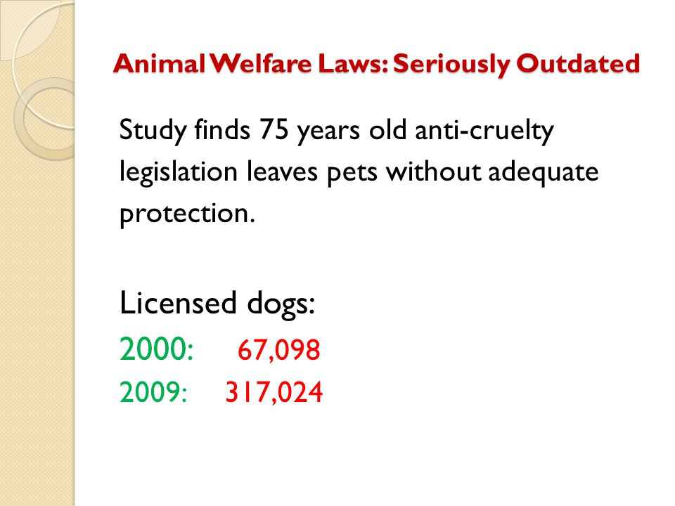 Animal Welfare Laws: Seriously Outdated Study finds 75 years old anti-cruelty legislation leaves pets without adequate protection. Licensed dogs: 2000
