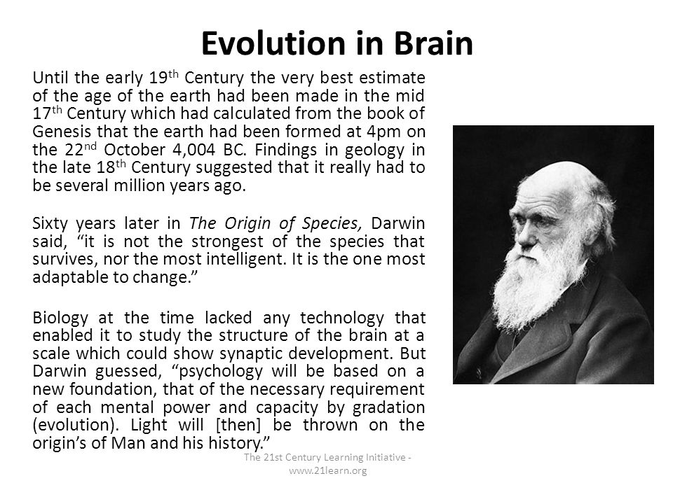 Evolution in Brain Until the early 19 th Century the very best estimate of the age of the earth had been made in the mid 17 th Century which had calculated from the book of Genesis that the earth had been formed at 4pm on the 22 nd October 4,004 BC.