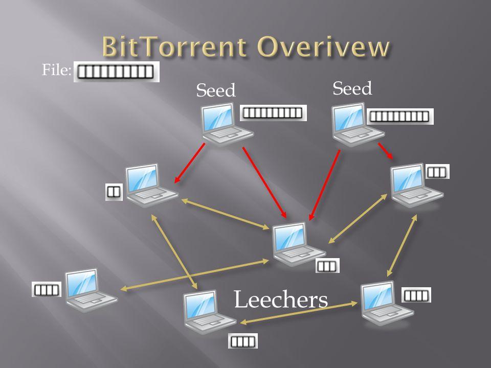 Seed Leechers File: