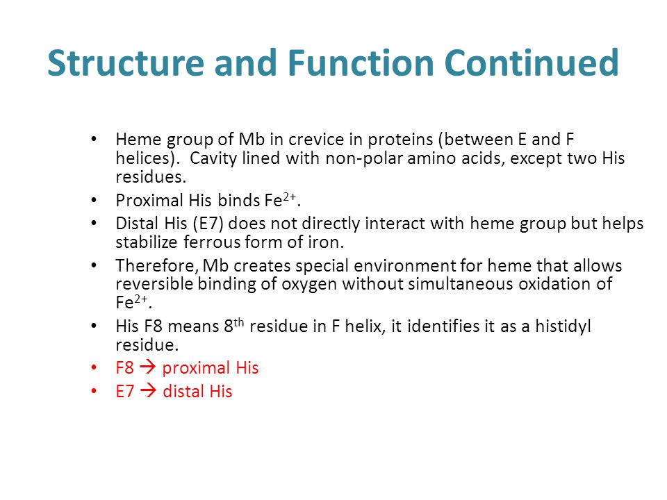 Structure and Function Continued Heme group of Mb in crevice in proteins (between E and F helices). Cavity lined with non-polar amino acids, except tw