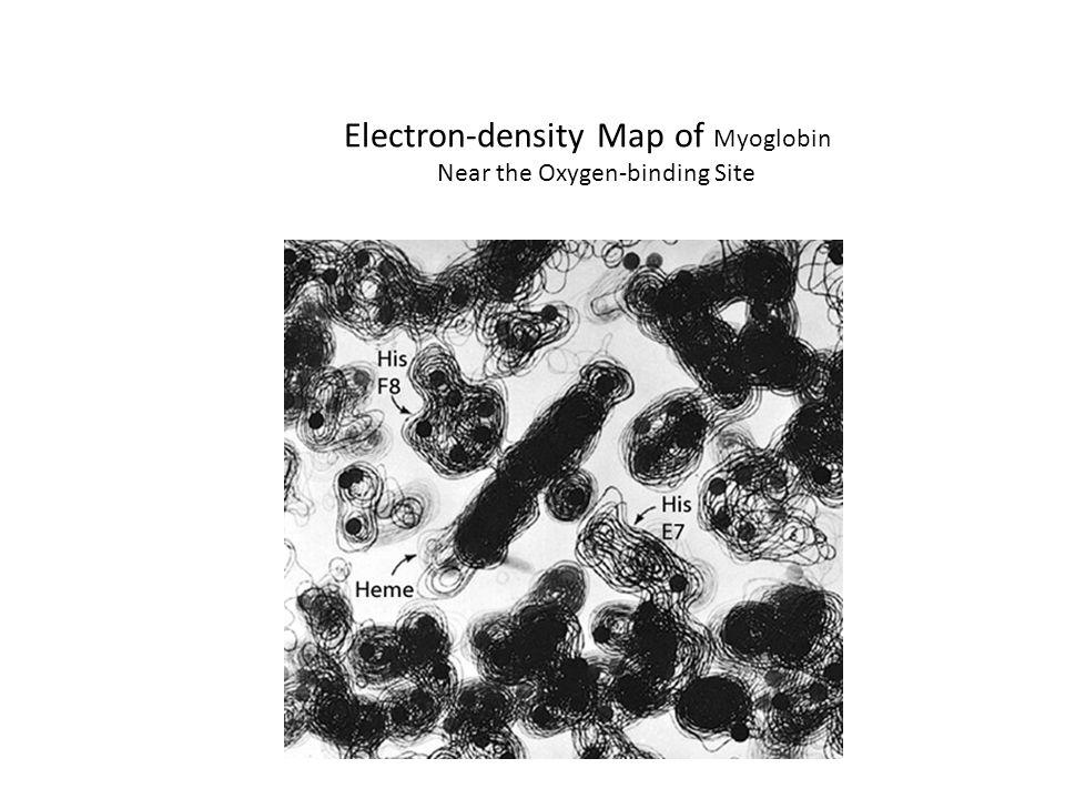 Electron-density Map of Myoglobin Near the Oxygen-binding Site