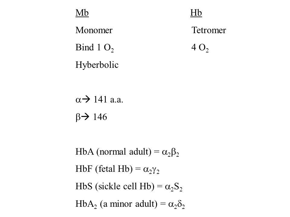 Mb Hb MonomerTetromer Bind 1 O 2 4 O 2 Hyberbolic 141 a.a. 146 HbA (normal adult) = 2 2 HbF (fetal Hb) = 2 2 HbS (sickle cell Hb) = 2 S 2 HbA 2 (a min