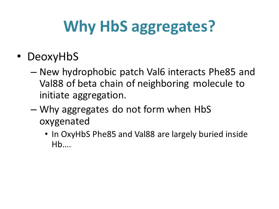 Why HbS aggregates.