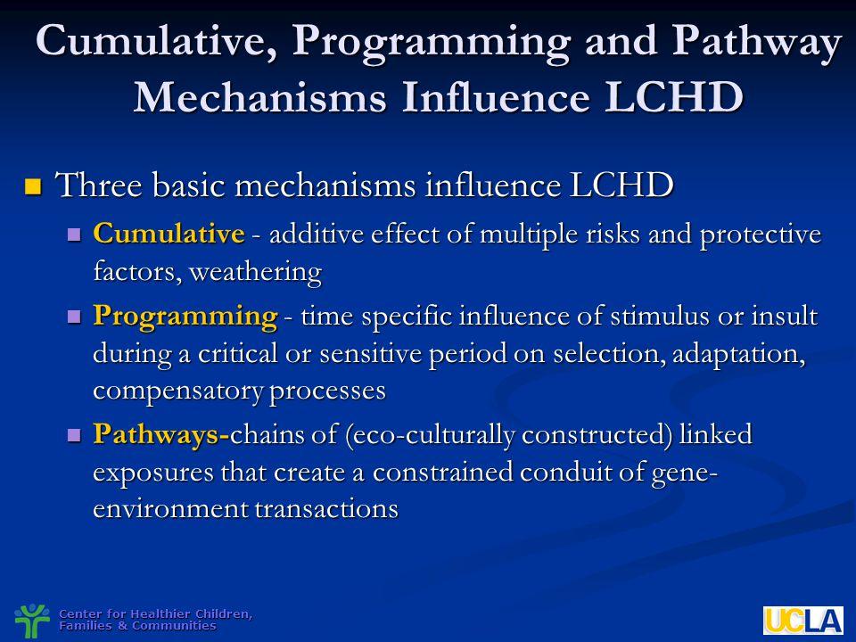 Center for Healthier Children, Families & Communities Cumulative, Programming and Pathway Mechanisms Influence LCHD Three basic mechanisms influence L