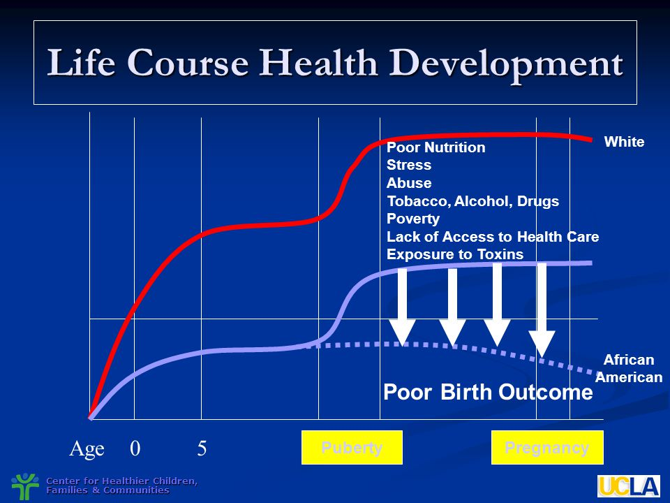 Center for Healthier Children, Families & Communities Life Course Health Development Poor Nutrition Stress Abuse Tobacco, Alcohol, Drugs Poverty Lack