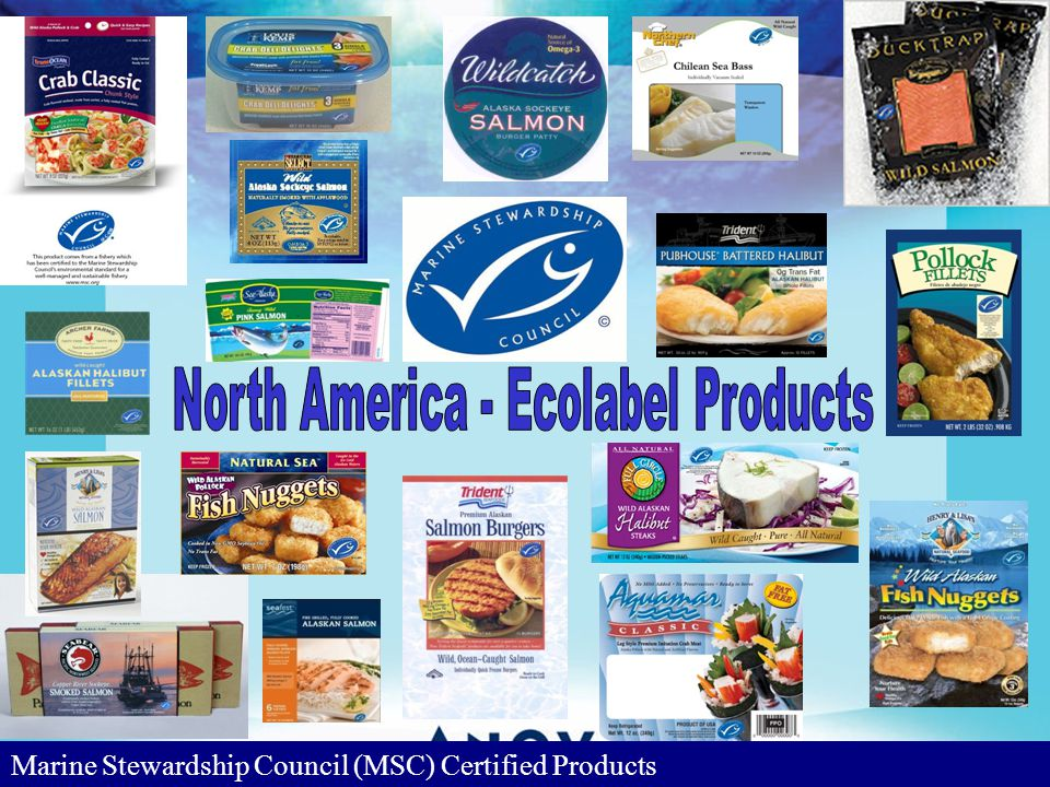 Marine Stewardship Council (MSC) Certified Products