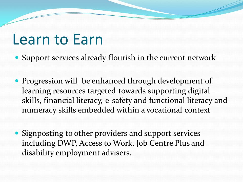 Learn to Earn Support services already flourish in the current network Progression will be enhanced through development of learning resources targeted towards supporting digital skills, financial literacy, e-safety and functional literacy and numeracy skills embedded within a vocational context Signposting to other providers and support services including DWP, Access to Work, Job Centre Plus and disability employment advisers.